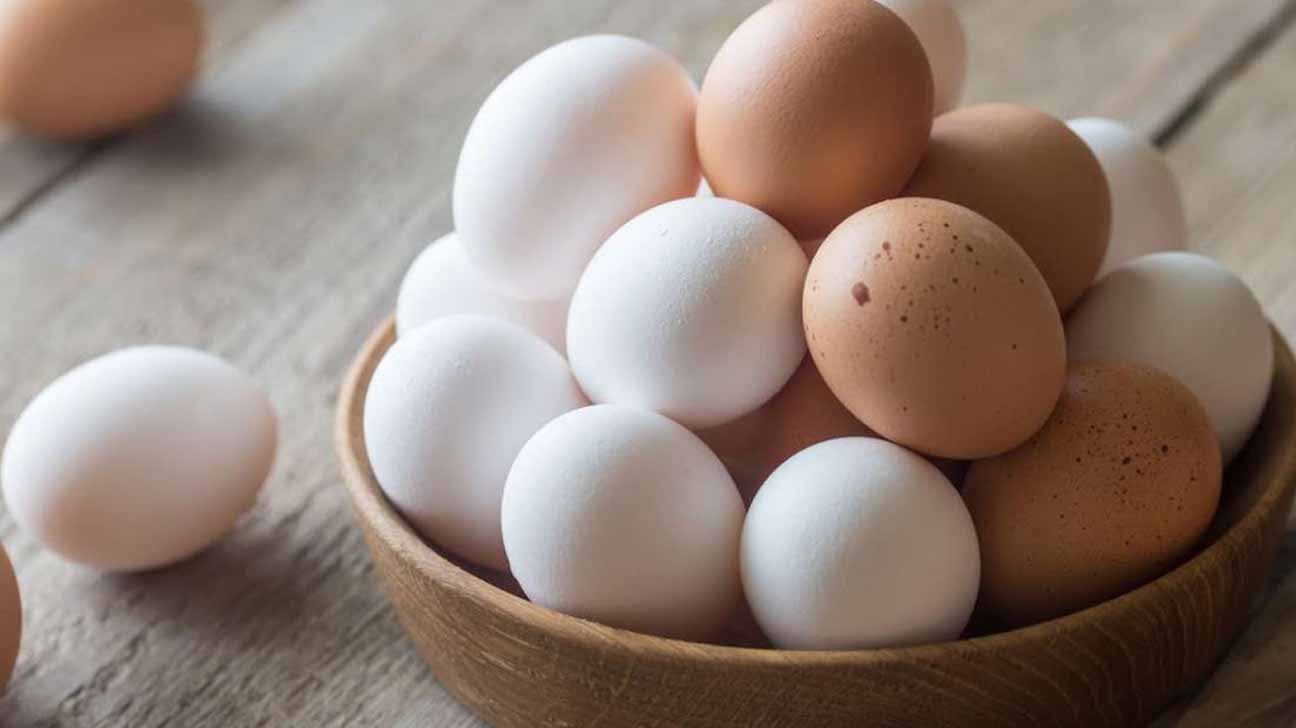 Composition and The Role of Eggs to Prevent Coronavirus