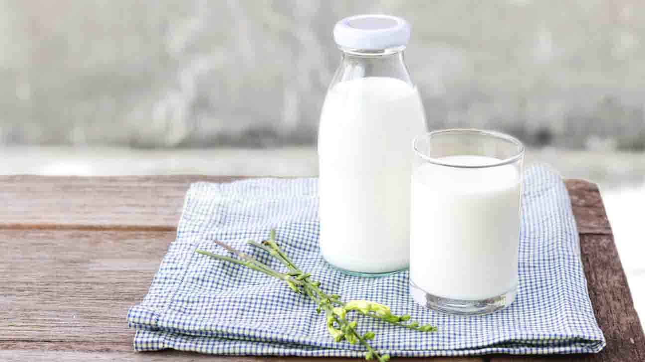 What are the Composition of Milk ? || Milk & Milk Products