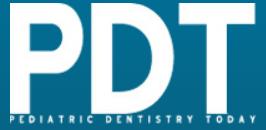 PDT - logo