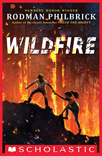 Book--Wildfire