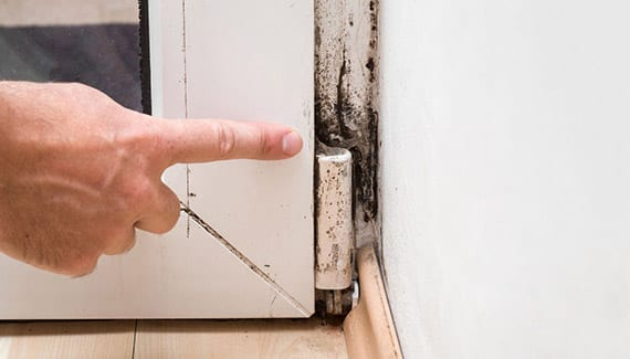 A door in need of mold remediation in New Orleans, LA