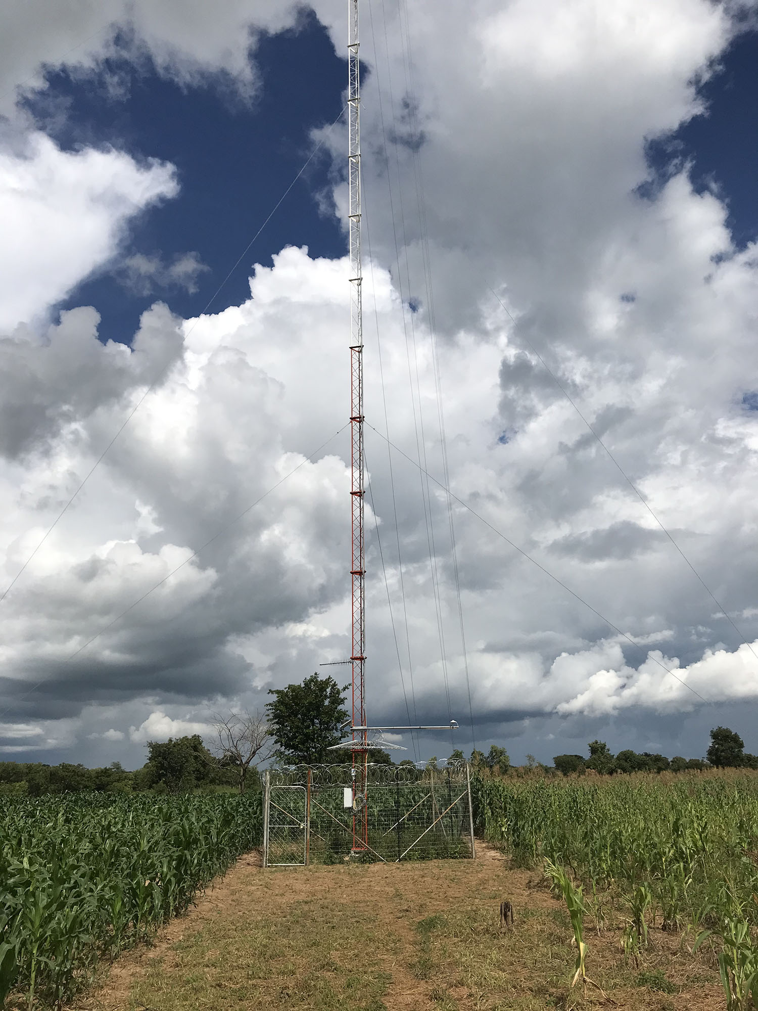 This met mast in a corn field provides revenue to the farmer and hope for electricity and economic development in the future.