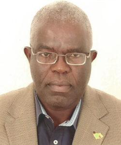 Portrait of Teddie Mwale, Upepo Senior Advisor.