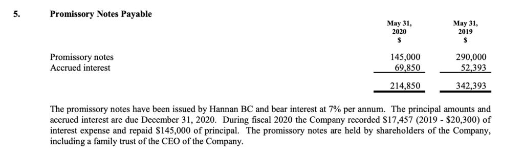 Hannan Metals - Debt Table