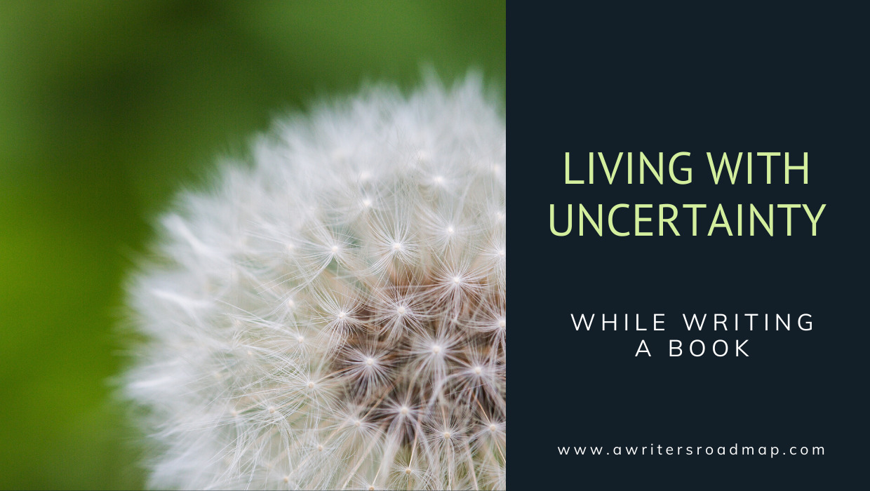 Living with Uncertainty while Writing a Book