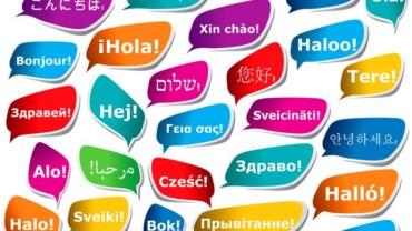 Best Translation Agency in NY