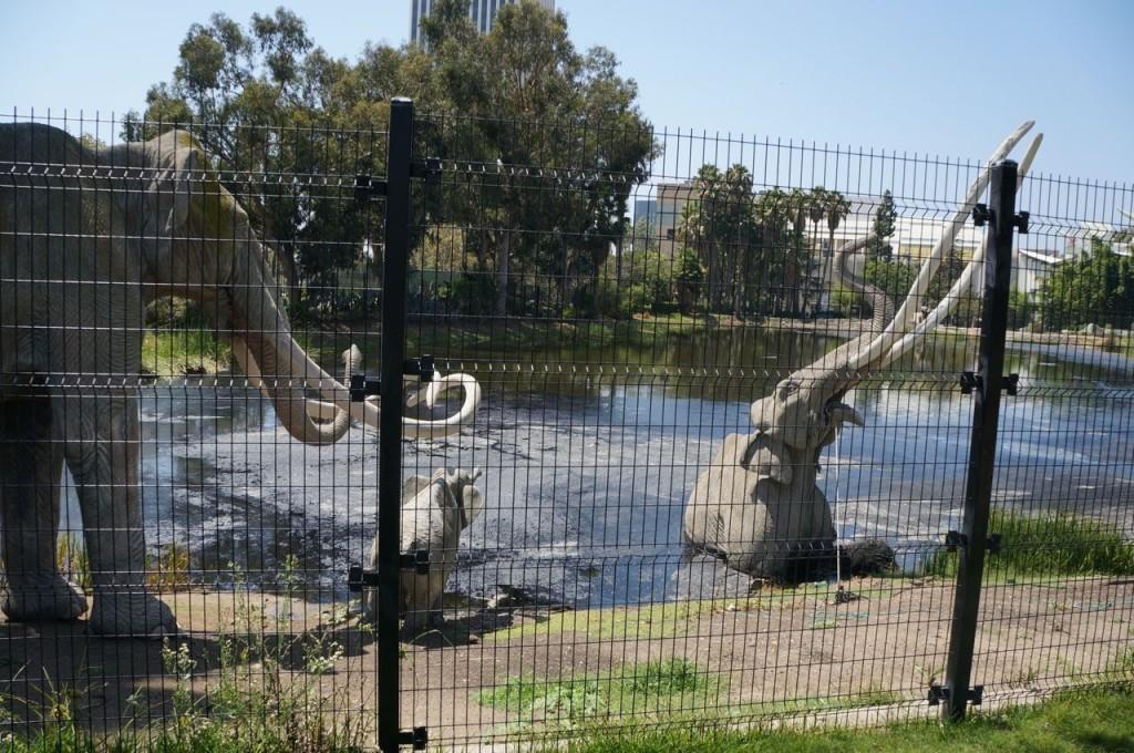La Brea Tar Pits in Los Angeles.