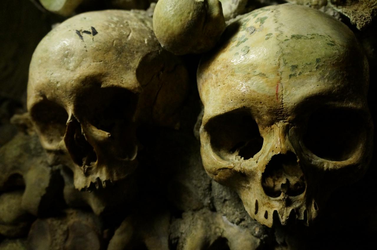 Bones! Spooky Surprises in the Catacombs of Paris