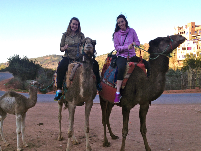 Riding camels is one of the top 10 things to do in Marrakech.