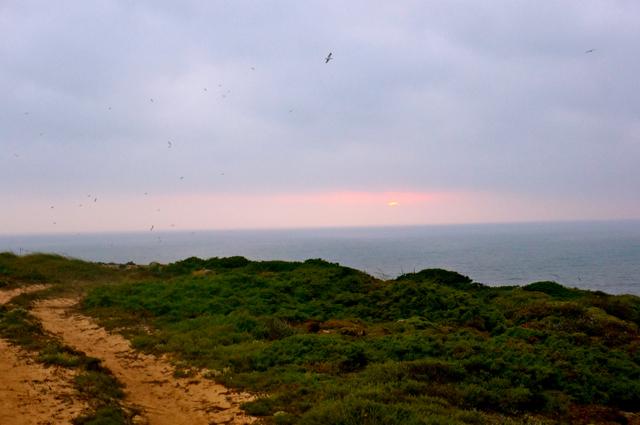 cliffs of Lagos, Portugal