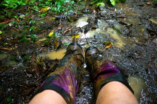 hiking through the costa rican rainforest