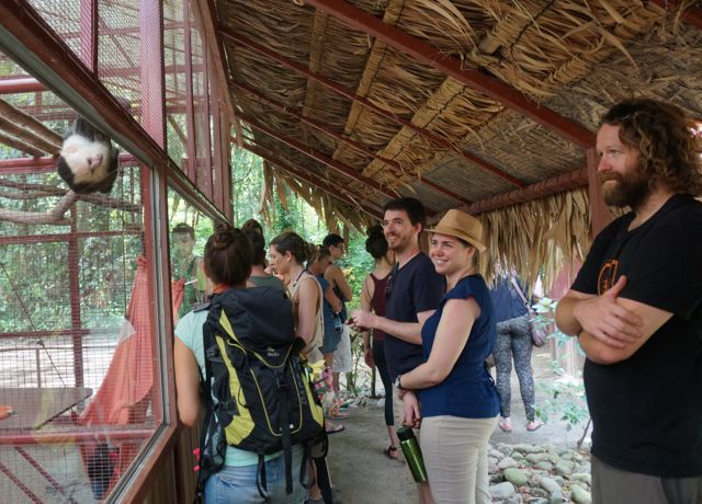 The Jaguar Rescue Center in Costa Rica. Warning: Cute Animal Pics Ahead