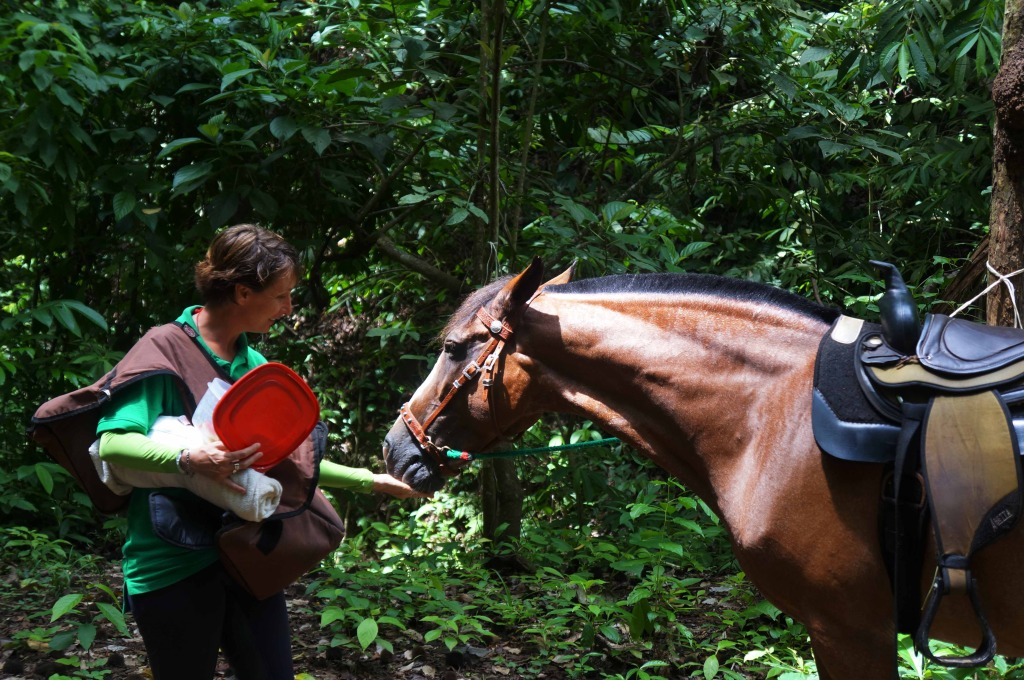 Discovery Horseback Tours Andrea and horse