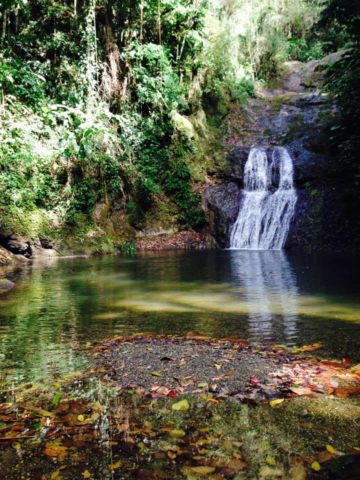 visit a waterfall on a solo trip to Trinidad and Tobago