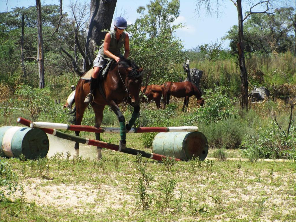 horseback riding vacations