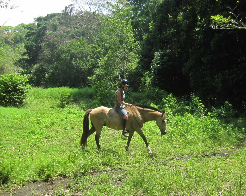 horseback riding vacations in costa rica