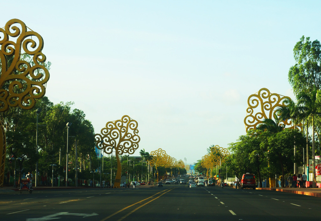 unusual sights in managua nicaragua street lined with yellow trees