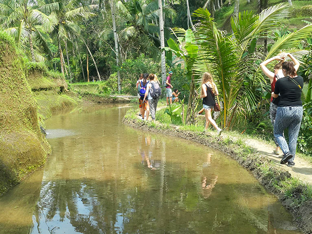 solo travel in bali beauty of nature