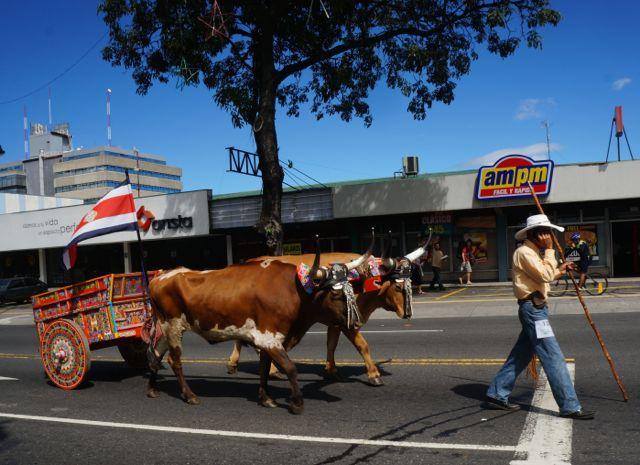 san jose oxcart parade- costa rica