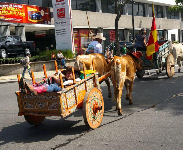 san jose oxcart parade- cowgirl