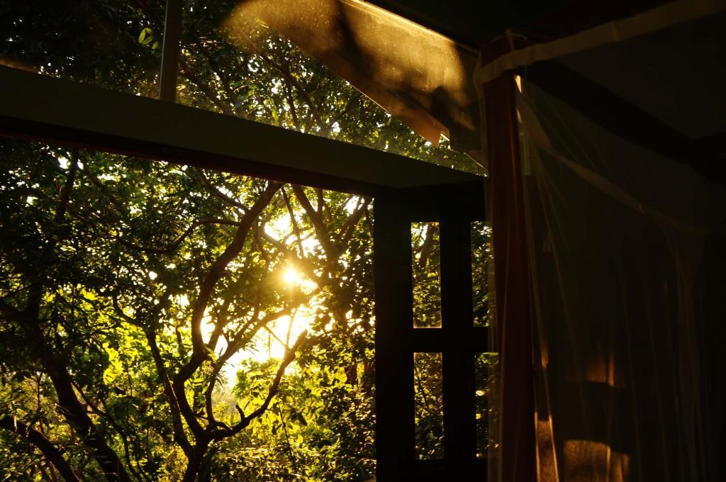 morning light at luz en el cielo hotel in montezuma