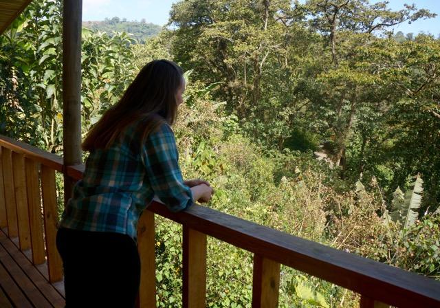 Farewell Costa Rica jungle
