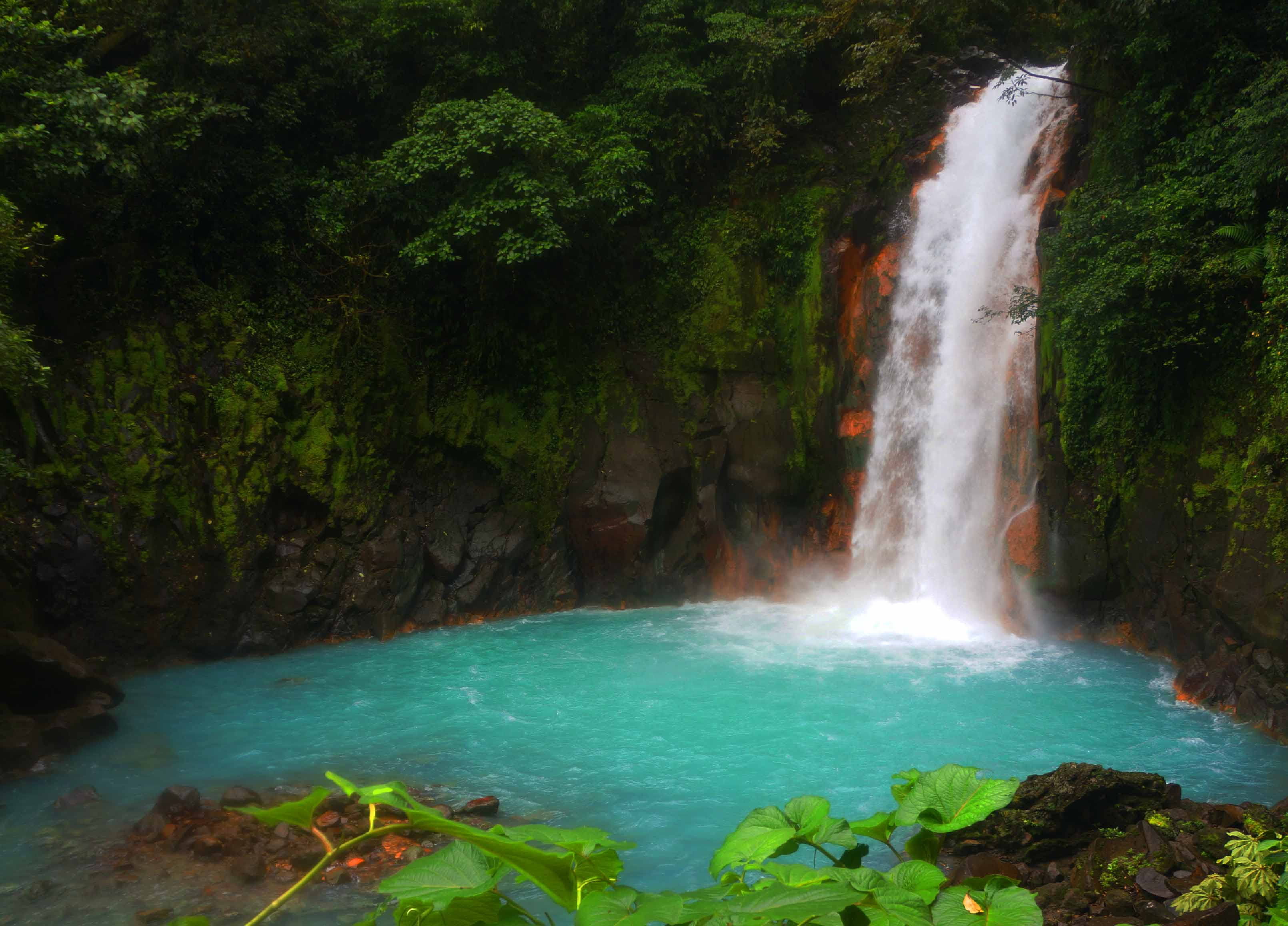 6 Things You Need to Know Before Visiting Rio Celeste
