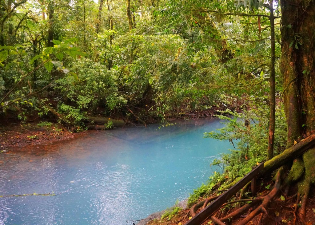 things to know before visiting rio celeste- why is rio celeste so blue
