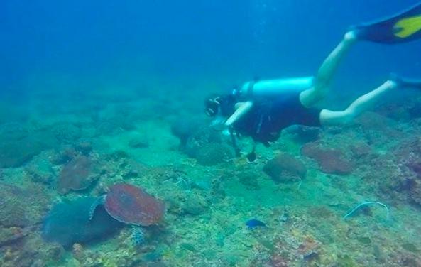 solo travel in thailand scuba