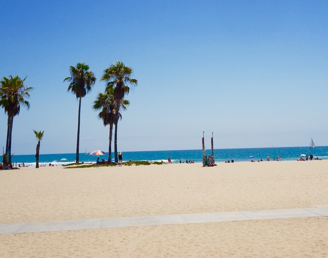 venice beach essential sights in los angeles