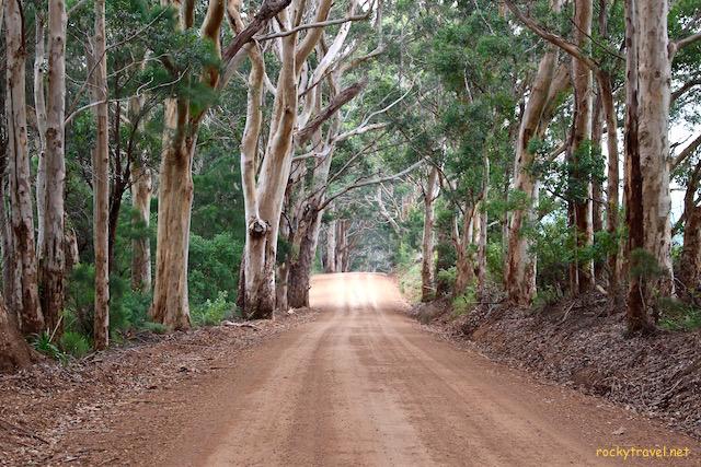 solo travel in australia road trip