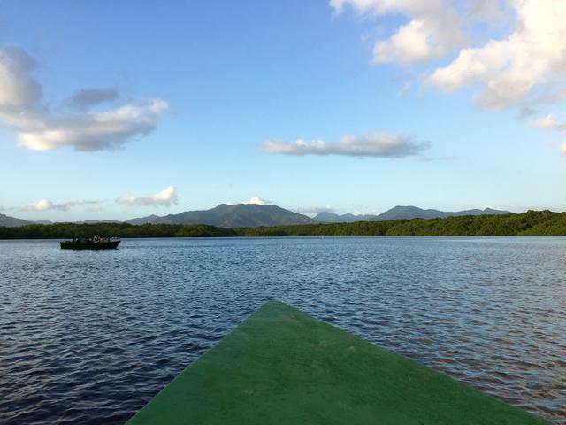Touring Trinidad Caroni Bird Sanctuary