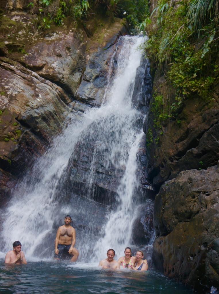 rainforest in puerto rico waterfall