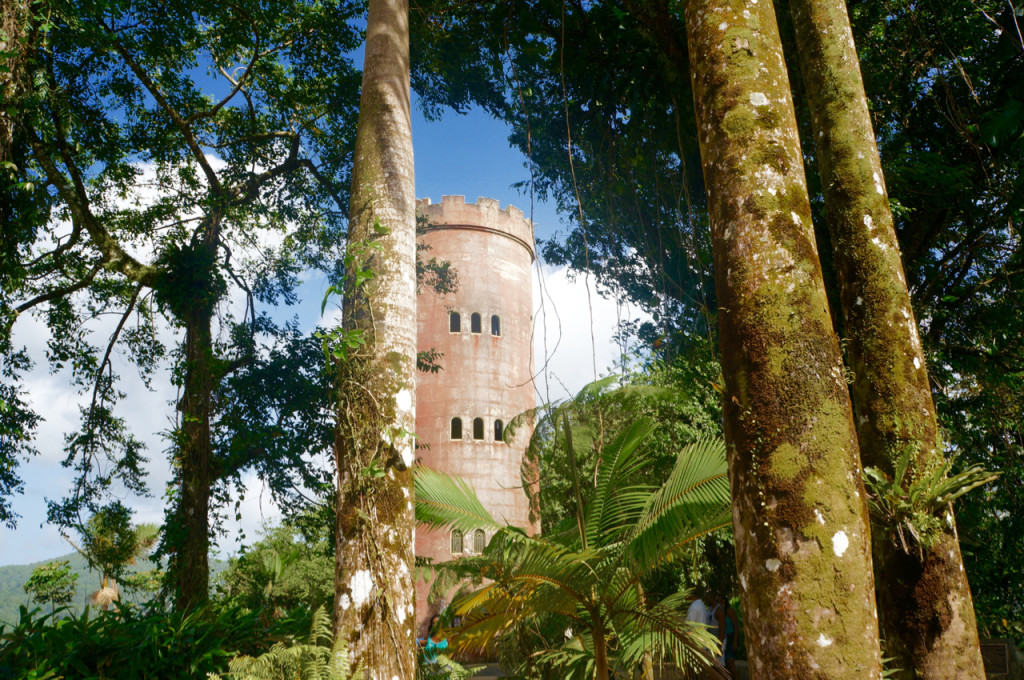tower rainforest in puerto rico