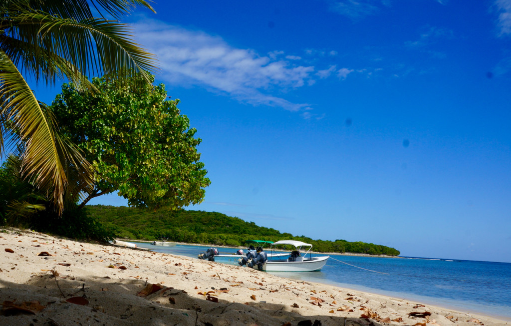vieques island beaches