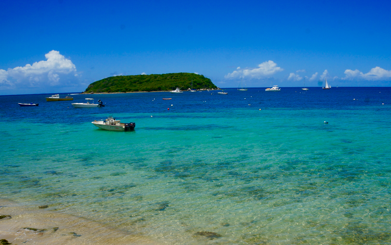 Beyond the Postcard: Vieques Island in Puerto Rico