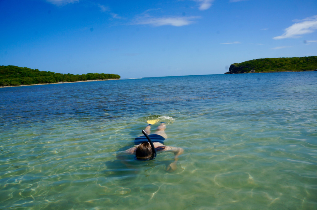 vieques island snorkeling