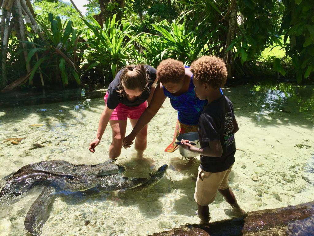 eels in papua new guinea