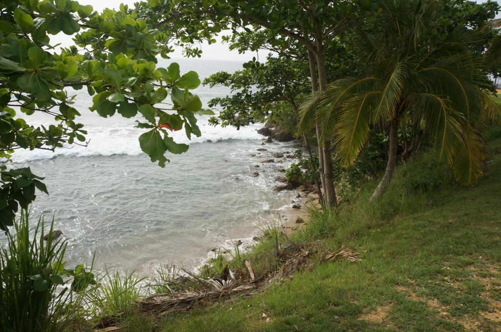 road trip puerto rico rincon