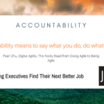JOB INTERVIEW:  Do Not 'Bob and Weave' Around Accountability