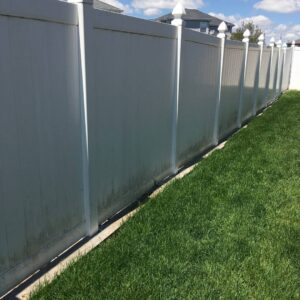 fence before surface cleaning with mold and mildew