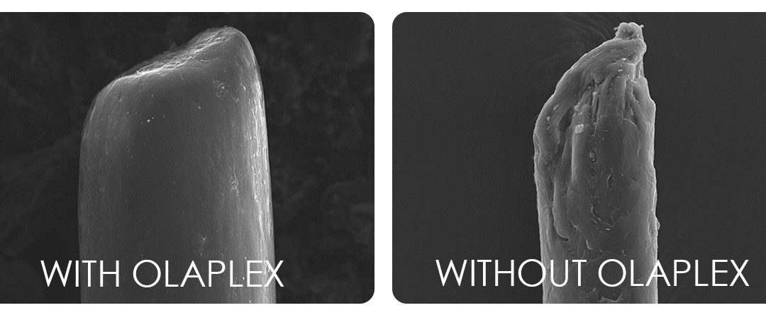 What Exactly is Olaplex and What Does it Do?