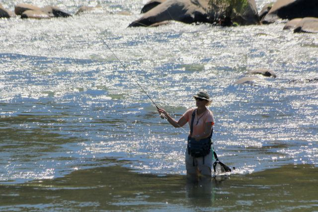 Truckee River at Mogul in mid-July 2014