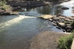 Truckee River nearing a flow of 100 cfs on August 1, 2014.