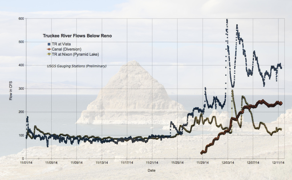 Graphic of Truckee River flows: Pyramid Lake doesn't benefit from increasing flows in River