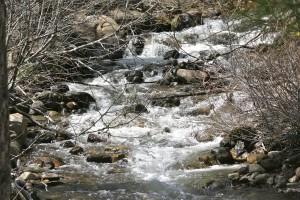 Galena Creek at Washoe County Galena Creek Park, Spring 2014