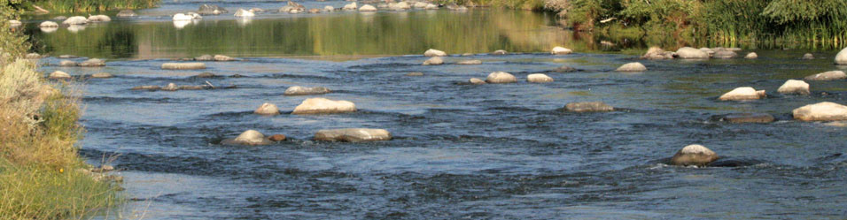 Keep the Truckee River Healthy and Flowing