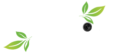 Ian Adrian Nature Photography
