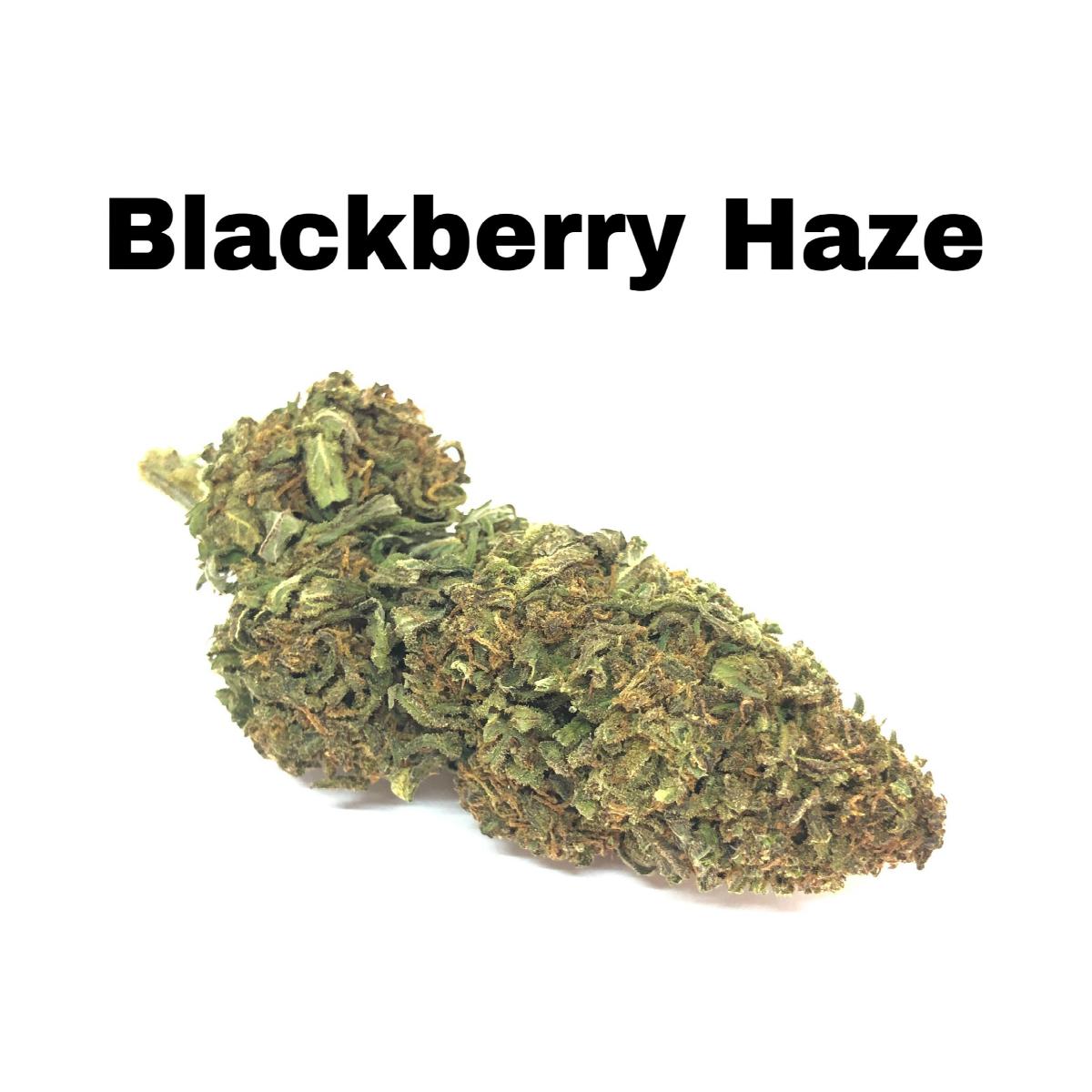 Blackberry Haze CBD Hemp Flower