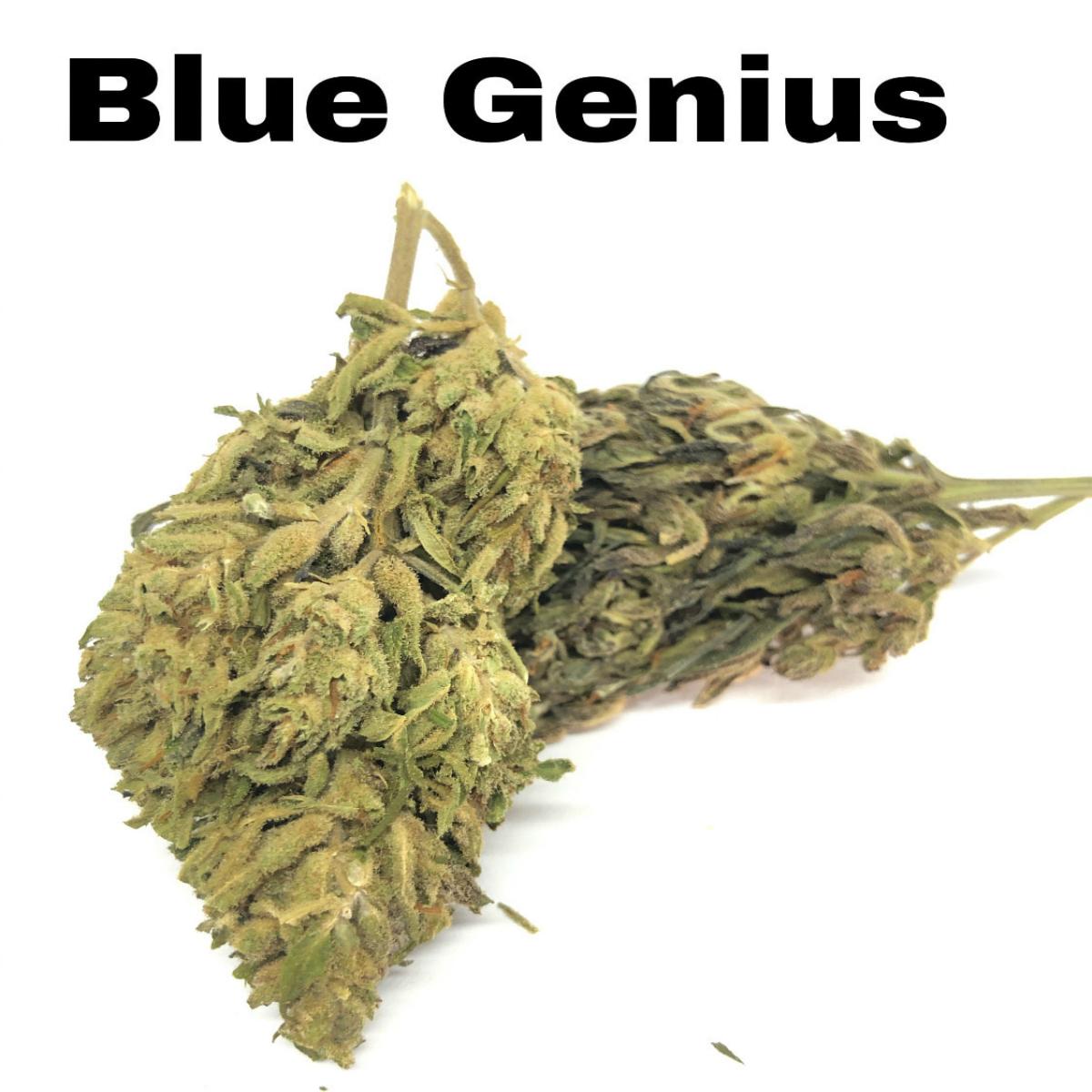 Blue Genius CBD Hemp Flower